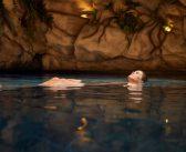 BRUUD introduceert nieuw fenomeen 'insane pools' in Nederland